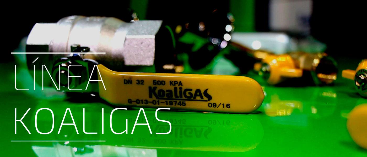 Koaligas gas domiciliario
